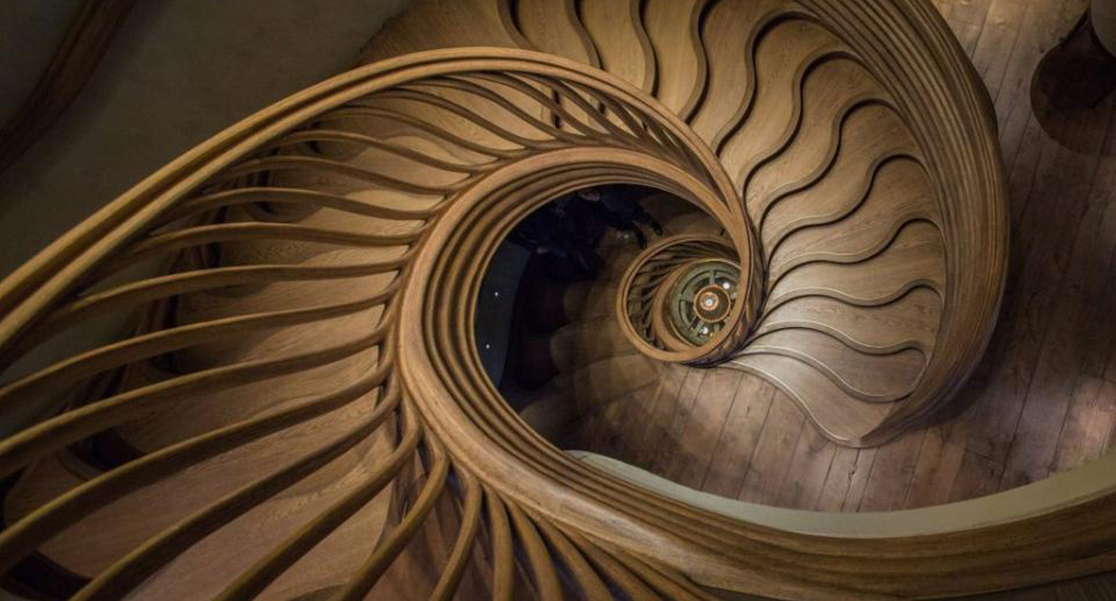 Industry News - Intricately-Curved Oak Staircase Weaves Like a Plant